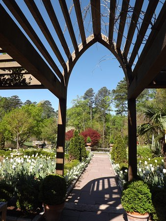 Durham, Carolina del Nord: white garden