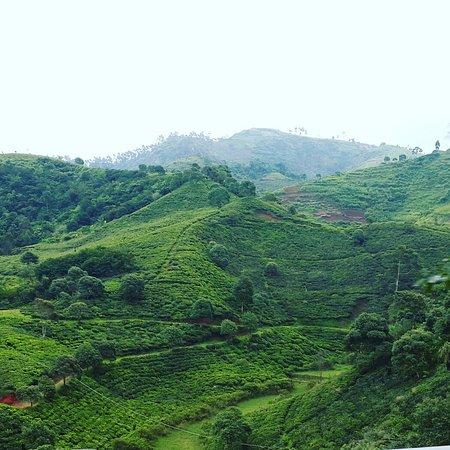 West Java, Indonesia: pangalengan, jawa barat