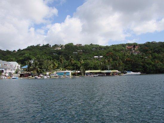 Son of Man Sea Tours: Marigot Bay