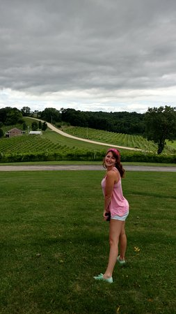 Park Farm Winery: the Iowa Vineyards