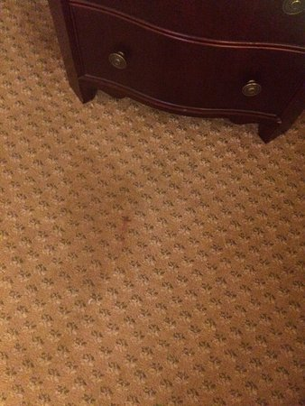 The Fairfax at Embassy Row, Washington D.C.: One of many stains on carpet.