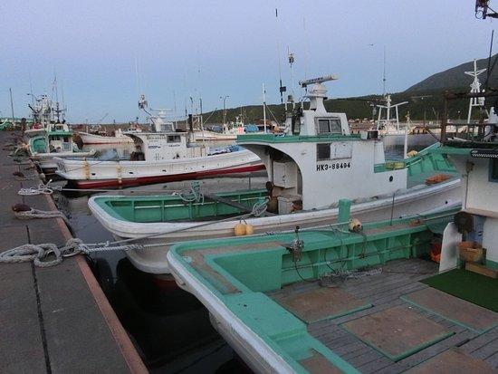 Rishirifuji-cho, Japan: 港の漁船