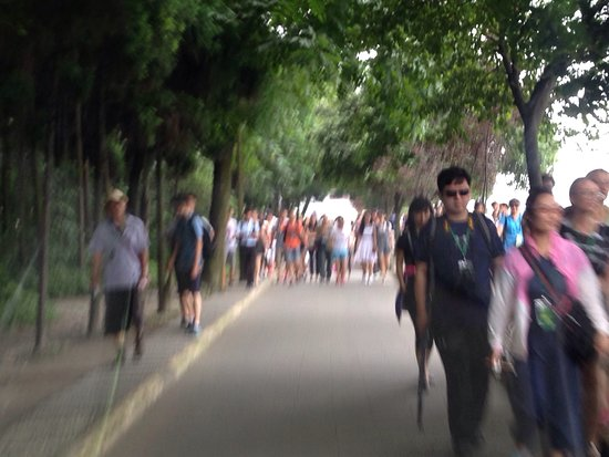 Dujiangyan, Chine : photo0.jpg