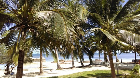 Sea Scene Resort: Fotografie z resortu