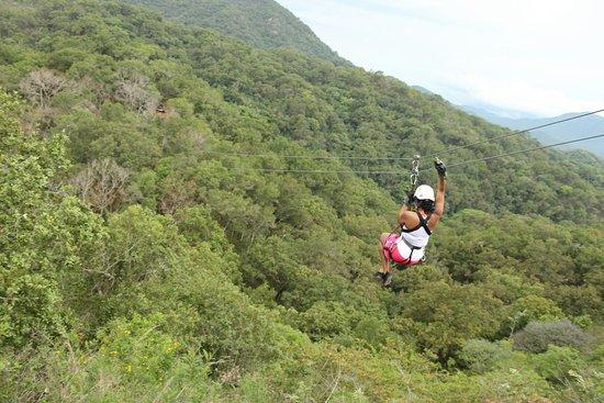Vallarta Adventures: IMG_0311_large.jpg
