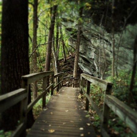 Chimney Rock, Carolina del Norte: Four Seasons Trail