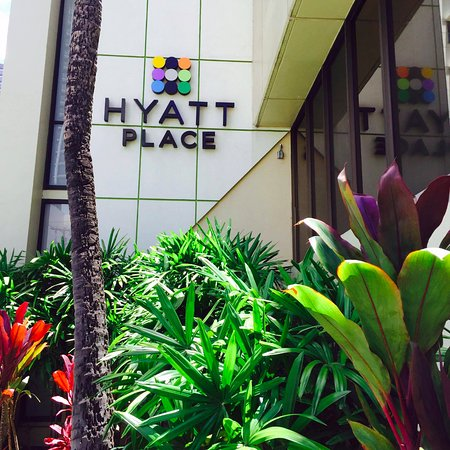 Hyatt Place Waikiki Beach: Such a great location! I would come back and stay here in a heartbeat!