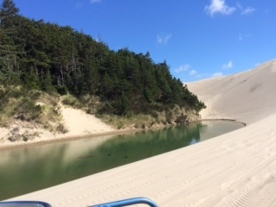 Florence, OR: Small lakes/ponds amidst the sand...