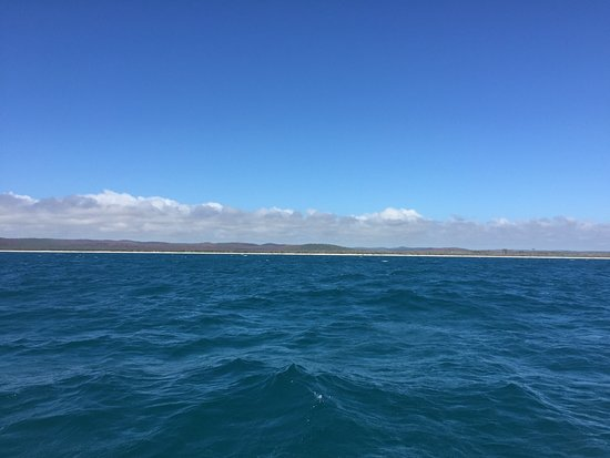 Hervey Bay, Australien: View on the way back from a great morning of whale watching