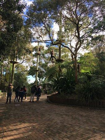 Mosman, Australia: Rope walk