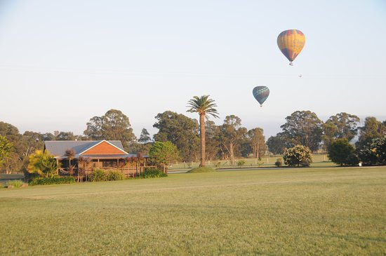Lovedale, Australia: Balloons over Lilies