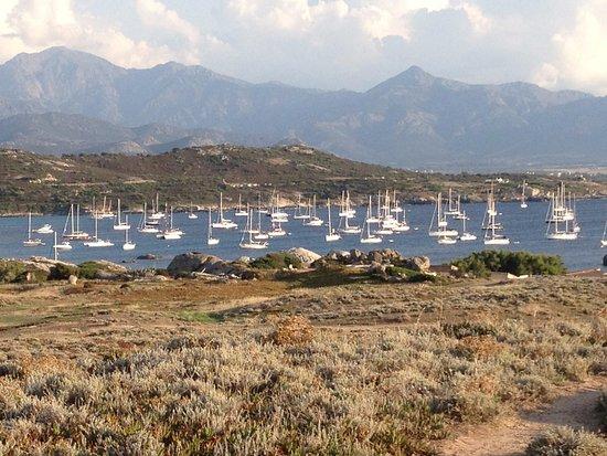 Lumio, France: Un jour de fort vent d'est la punta Spano est un excellent abri pour les bateaux