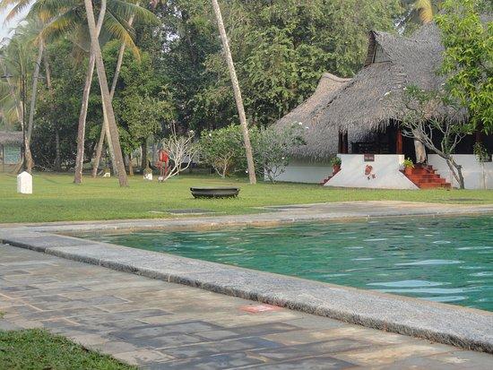 Marari Beach Resort: Pool