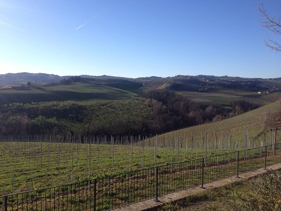 Serralunga d'Alba, İtalya: L'Antico Asilo