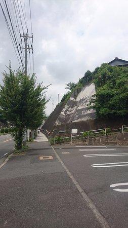 Tokoname Manekineko Street