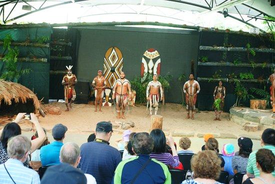 Caravonica, Austrália: Tjapukai 2