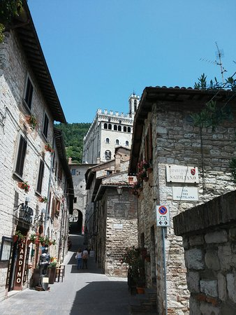Residenza di Via Piccardi: 20160722_131140_large.jpg