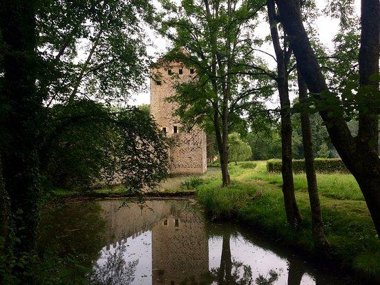 Vault-de-Lugny, Frankreich: En se promenant dans le parc