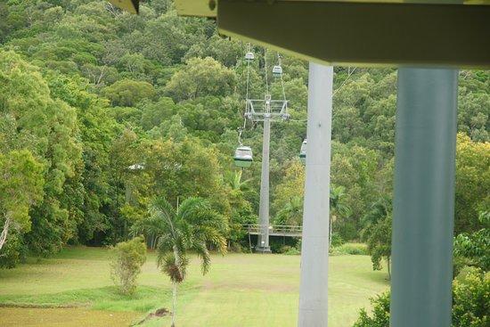 Smithfield, Australia: Skyrail 1