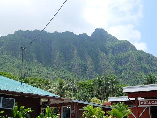 Kaneohe, Гавайи: Mauka