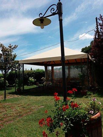 San Lorenzo Nuovo, Italia: Giardino!!!