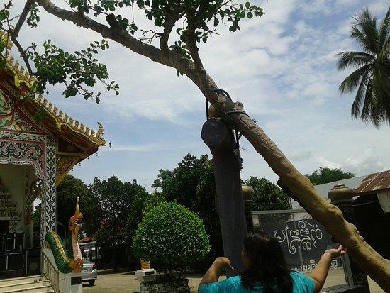Pua Thailand  City new picture : Pua, Thailand: 20160719 112832 large