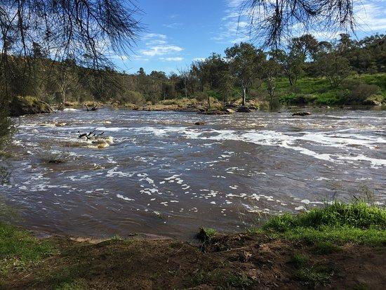 Brigadoon, ออสเตรเลีย: Bells Rapids further downstream