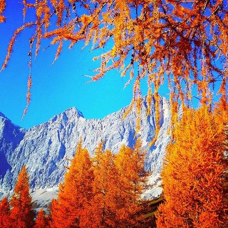 Hotel Berghof: Herbst