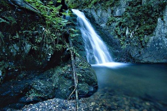 Sentiero Naturalistico Piave