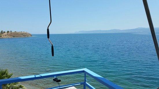 Lefkandi, Griechenland: 20160714_135014_large.jpg