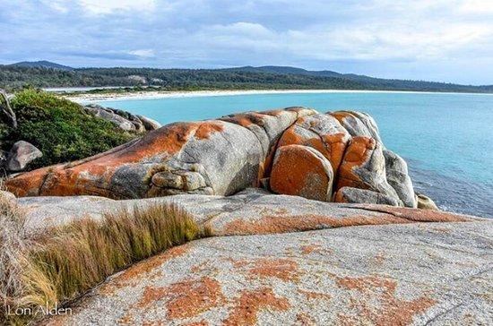Tasmania, أستراليا: Just beautiful.
