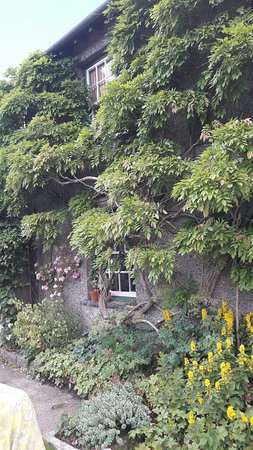 Hill Top, Beatrix Potter's House: 20160620_131930_large.jpg