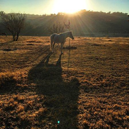 Muldersdrift, Afrika Selatan: photo3.jpg