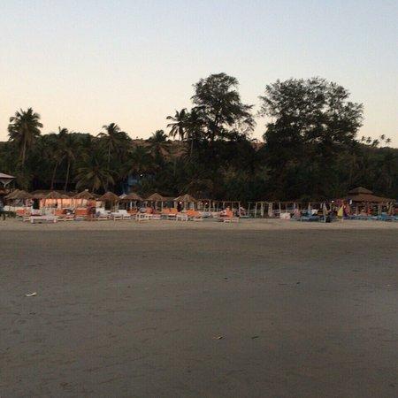 Ashvem Beach, Indien: photo3.jpg