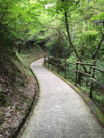 Saijo, Japón: 横峰寺 参道の様子