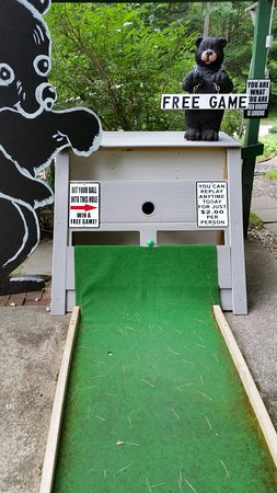 Steamboat Landing Mini Golf (Naples) - 2021 All You Need ...