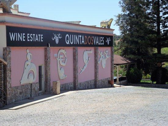 Estombar, Португалия: Vinyard.