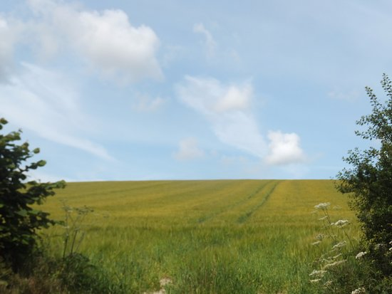 Wiltshire, UK: The Ridgeway