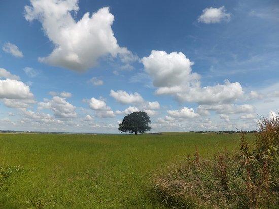 Wiltshire, UK: The Ridgeway