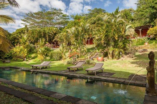 Lakaz Chamarel Exclusive Lodge: Pool in front of Kaz Namaste - tunliweb.no