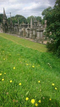 Undercliffe Cemetery: DSC_0669_large.jpg