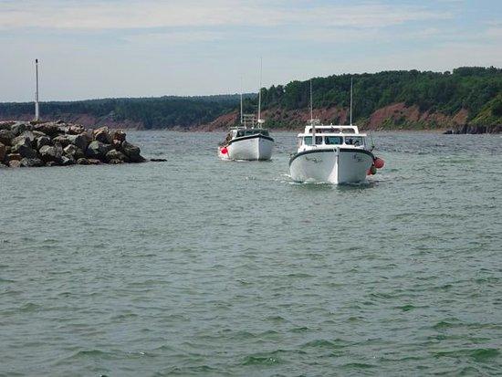 Antigonish, Kanada: Coming in from sea.