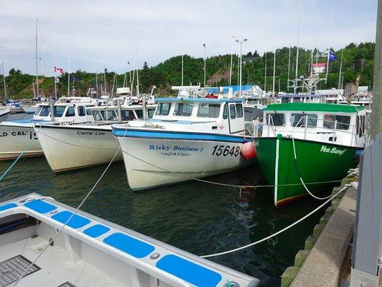 Antigonish, Kanada: Boats at rest.