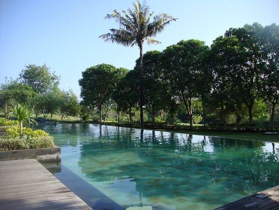 Bilde fra Le Grande Bali