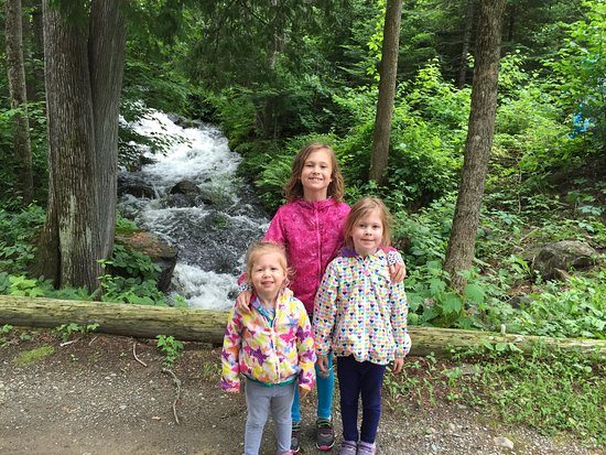 Ely, MN: Beautiful stream and waterfall