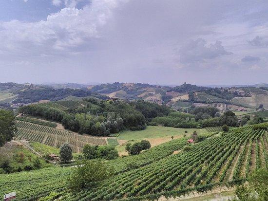 Vinchio, إيطاليا: IMG_20160723_135112_large.jpg