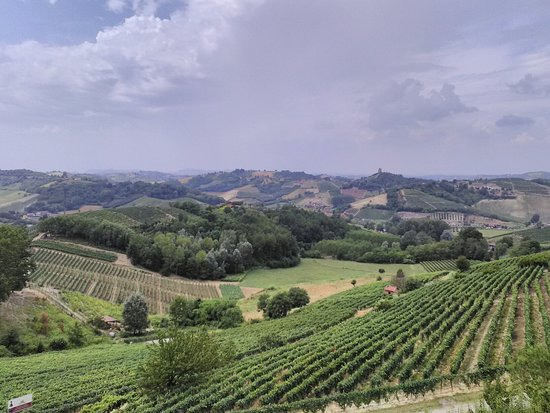 Vinchio, Ιταλία: IMG_20160723_135112_large.jpg