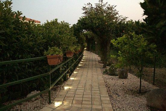 B&B Villa Valentina Taormina : viale camere