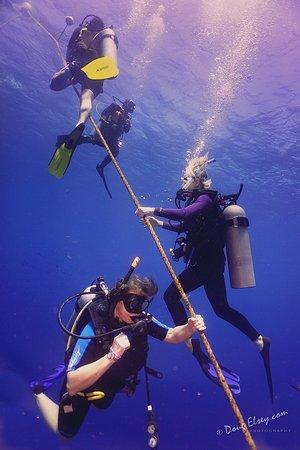 Sandy Bay, Honduras: divers