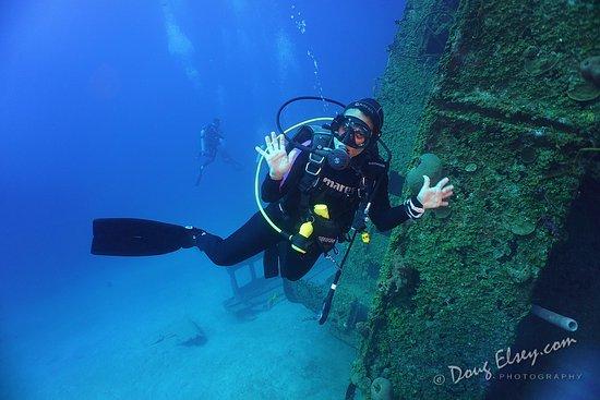 Sandy Bay, Honduras: beautiful reef
